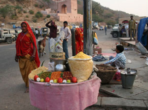india-street-food-jaipur-near-amber-india-jaipur-india-771687